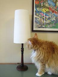 How To Make A Lamp Shade Chandelier How To Make A Lining For A Lampshade Hunker