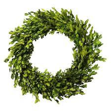 boxwood wreath lloyd 20 in artificial boxwood preserved wreath