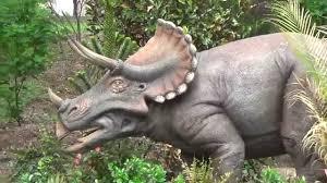 bronx zoo dinosaur park drive through exhibit youtube