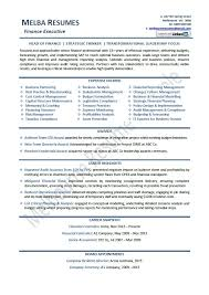 Samples Of Resume Writing by Example Of A Professional Resume Executive Resumes Professional