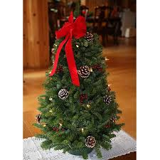 fresh cut classic pre lit 28 inch maine balsam tabletop tree