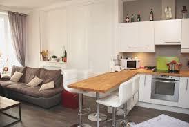 salon de cuisine salon ouvert sur cuisine awesome hostelo