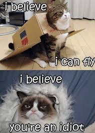 Best Grumpy Cat Memes - 35 funny grumpy cat memes ladyomatic com