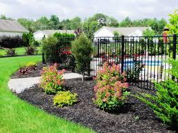 Garden Shrubs Ideas Most Popular Shrubs For Landscaping Ideas