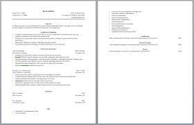 sample of loan processor resume for job application