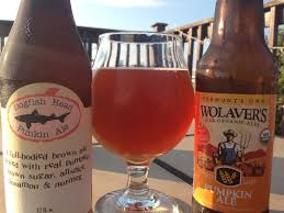 Dogfish Pumpkin Ale by 99 Bottles Inside The World Of Craft Beer Boston Com