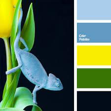 color scheme for the interior design color palette ideas
