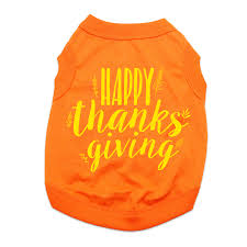 thanksgiving tshirt happy thanksgiving dog shirt orange with same day shipping