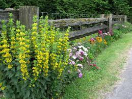 low cost upkeep uforever flowering flowerbeds best small yard