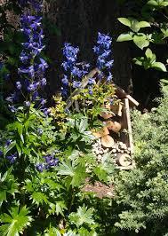 the birds and the bees backyard habitats