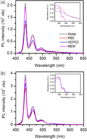 functionalization of emissive conjugated polymer nanoparticles by