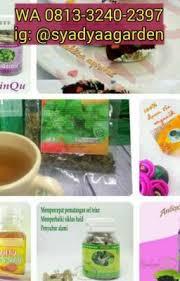 Teh Tinqu wa 0813 3240 2397 jual produk herbal tinqu syadyaagarden wattpad