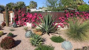 How Much Gravel Do I Need In Yards 6 Landscaping Mistakes That Will Destroy Your Yard Barley