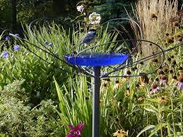 landscaping ideas u0026 garden ideas blog yardshare com