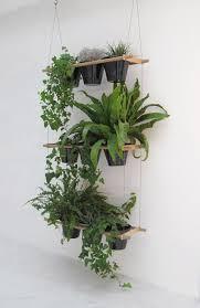 diy indoor hanging herb garden