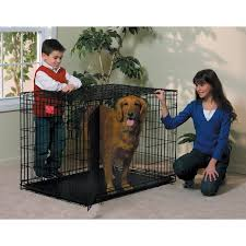 nissan rogue for dogs midwest life stages folding double door dog crate hayneedle