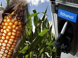 ethanol testing laboratory