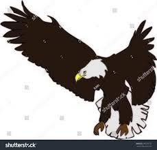 bird eagle stock vector 269270132 shutterstock