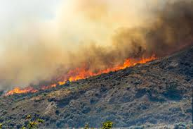 Wildfire Map Kamloops by July 19 The Elephant Hill Formerly Ashcroft Reserve Fire