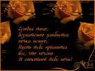 Плейкаст «СПИ !.. НОЧЬ В ИЮЛЕ ТОЛЬКО ШЕСТЬ ЧАСОВ ... СПОКОЙНОЙ ...