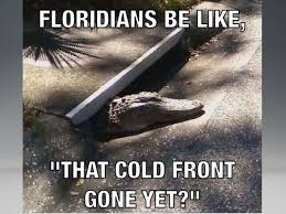 Funny Cold Meme - the 25 best florida memes about america s weirdest state