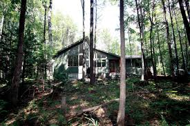 in the woods house in the woods attardo pondelis architecture