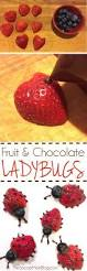 these easy fruit ladybugs make eating fruit fun a healthy snack