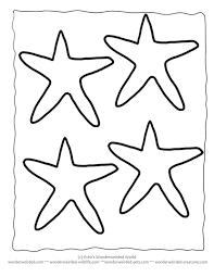 best 25 starfish template ideas on pinterest pet seahorse easy