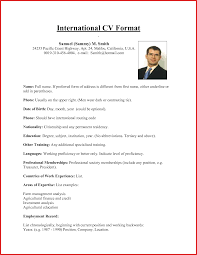 Usa Resume Template by Beautiful Us Resume Format Personel Profile