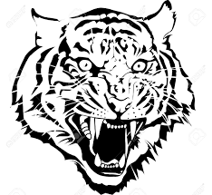 black and white tiger head vector by illuatraror i draw from
