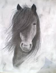 the 25 best horse drawings ideas on pinterest horse drawing