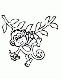 printable coloring pages monkeys coloring pages of monkeys easy preschool pinterest monkey