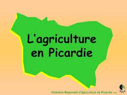 chambre d agriculture de picardie l agriculture en picardie ppt télécharger