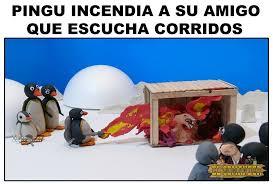 Pingu Memes - fierro pingu meme by danyboy1 memedroid