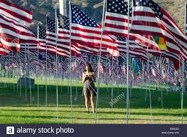 Sea Flag Meanings Young Woman Looking At Her Cell Phone Amidst Sea Of American Flags