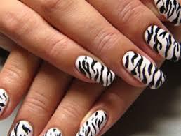 zebra pattern nail art 21 zebra nail art designs beginners picsrelevant