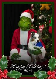 happy holidays from airpets america happy holidays