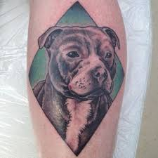 the 12 coolest staffordshire bull terrier tattoo designs in the world