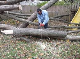 echo chain saw testimonials echo usa