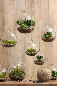 floor plants home decor plants home decor floor plants home decor mindfulsodexo