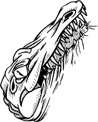 coloring page of alligator having sharp teethes coloring point