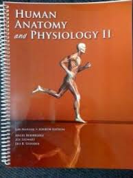 Human Anatomy Physiology Laboratory Manual Pdf Anatomy Ii Laboratory Manual Abebooks