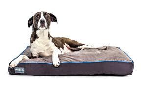amazon com better world pets 5 inch thick waterproof orthopedic