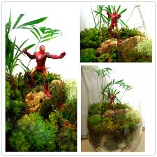 cool terrariums photo u2013 outdoor decorations