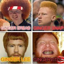 Ginger Snap Meme - don t call us gingers only we can say gingas imgflip