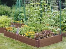 small kitchen garden ideas low budget veggie garden ideas your own food small