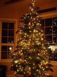 indoor christmas tree lights christmas lights decoration