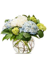 hydrangea arrangements pet sympathy delivery toppenish wa s country floral