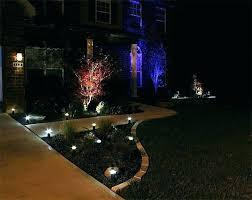led landscape tree lights garden tree lights amaryllis for gardening