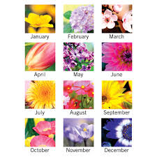 Flowers Of The Month At A Glance Flower Garden Monthly Wall Calendar Monthly 1 Year